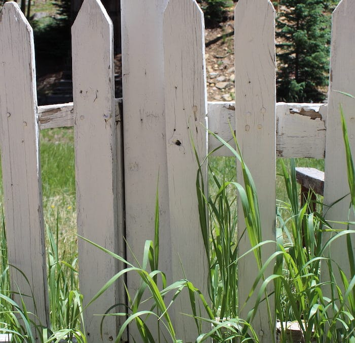 Fathers and Fences—Invaluable Life Lessons